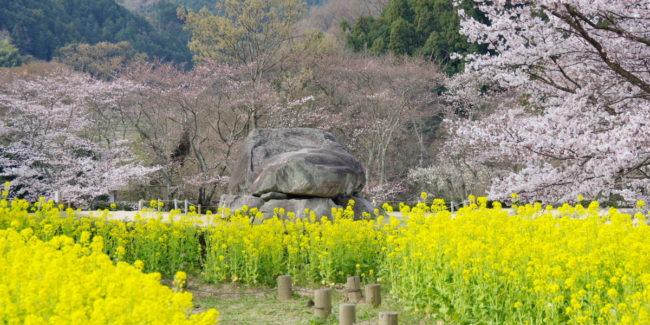 あをによし 奈良の都は 咲く花の にほふがごとく 今盛りなり