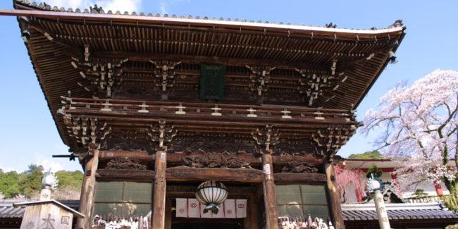 2012〜桜〜長谷寺